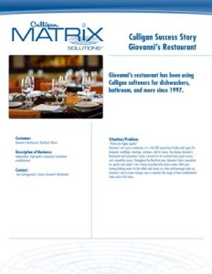 Culligan Texas Giovannis Restaurant Case Study